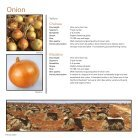 Onion 2019 - Page 4