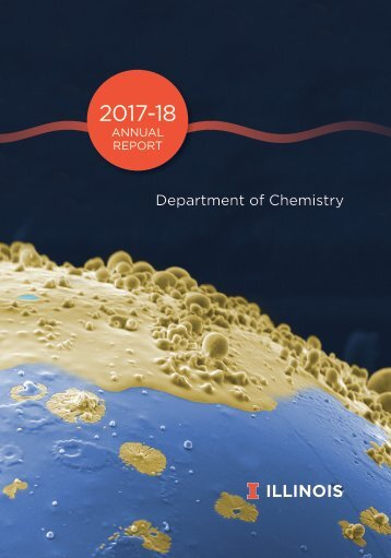 Chemistry Annual Report 2017-18