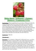 Himbeeren - Seite 7