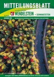 Wendelstein + Schwanstetten November 2018