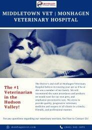 Middletown Vet _ Monhagen Veterinary Hospital