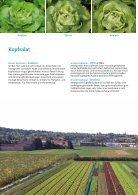 Katalog Biologisches Saatgut 2019 - Seite 4