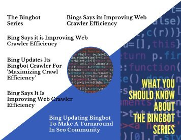 What You Should Know About The Bingbot Series