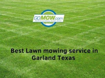 best Lawn mowing service in Garland