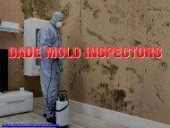 Mold Remediation Miami | Dada Mold Inspectors