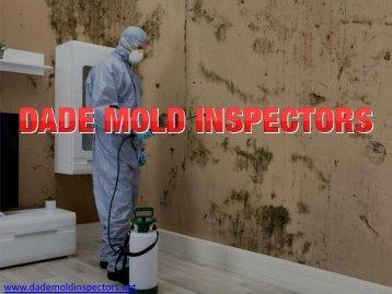 Mold Remediation Miami   Dada Mold Inspectors
