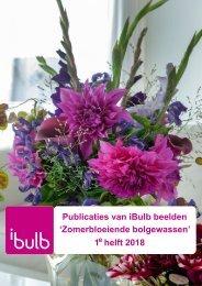 Publicaties van iBulb beelden