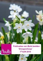 Publicaties van iBulb beelden Droogverkoop