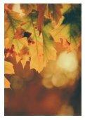 November at Devonshire Club - Page 2