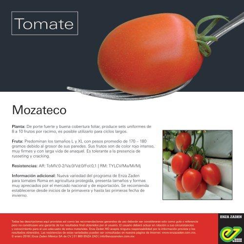 Tomate Mozateco