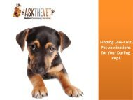 Finding low cost pet vaccinations for your darling pup