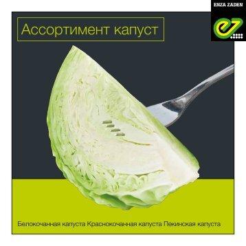 Brochure Kazakhstan Cabbage 2018