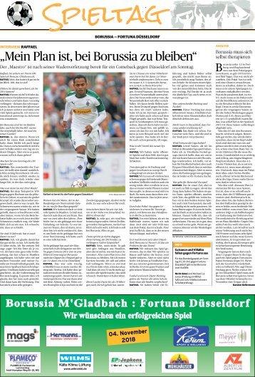 Spieltag: Borussia - Fortuna Düsseldorf  -03.11.2018-