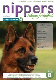 nippers 2018-3 Ausgabe B