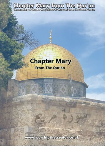 CHAPTER MARY