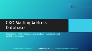 Where can I find the best CKO email database in the USA