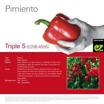 Pimiento Triple 5