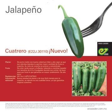 Jalapeño Cuatrero