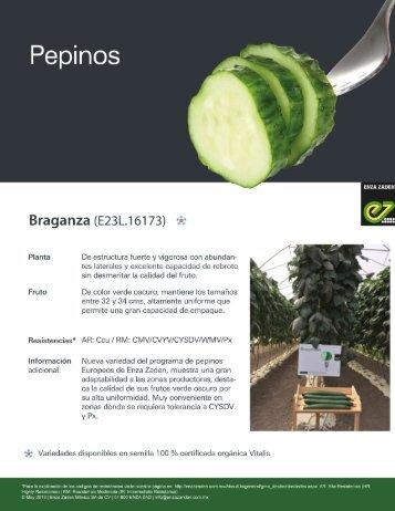 Pepino Braganza