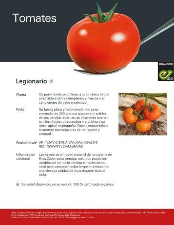 Tomate Legionario