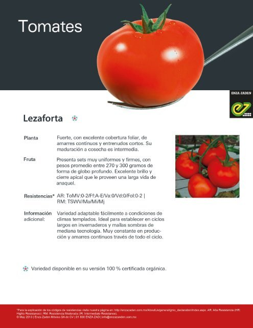 Tomate Lezaforta