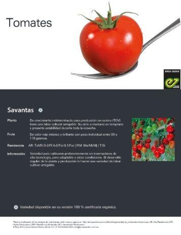 Tomate Savantas