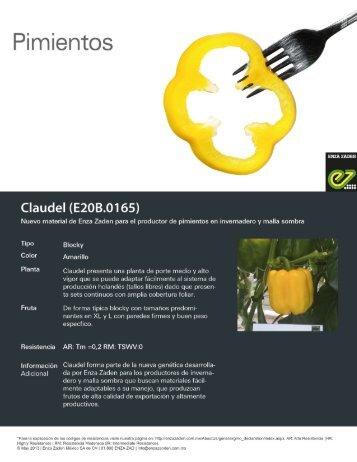 Pimiento Claudel (E20B.0165)