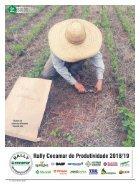 Jornal Cocamar Novembro 2018 - Page 4