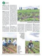 Jornal Cocamar Novembro 2018 - Page 7