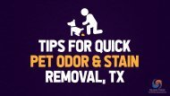 Tips for ,Quick Pet Odor & Stain Removal TX