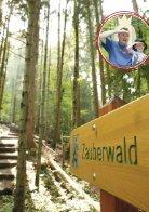 Der sagenhafte Bergwald - Seite 2