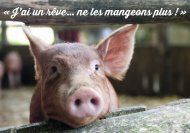 Carte Sentience Cochon