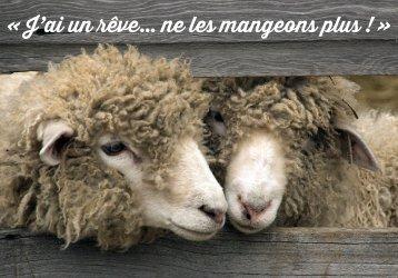 Carte Sentience Mouton