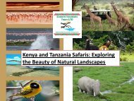Kenya and Tanzania Safaris - Exploring the Beauty of Natural Landscapes
