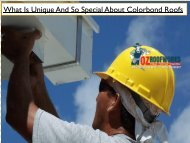 What Is Unique And So Special About Colorbond Roofs
