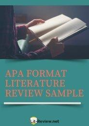 Professional APA Format Literature Review Sample