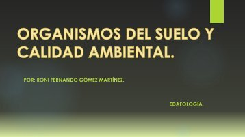 Organismos del suelo y calidad ambiental