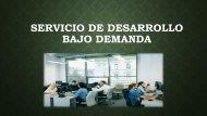 ¿Qué es el Servicio de Desarrollo a Pedido?