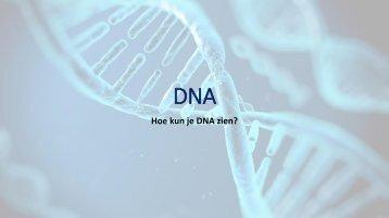 PP DNA