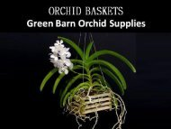 Shop New Styles of Orchid Baskets at Greenbarnorchid.Com
