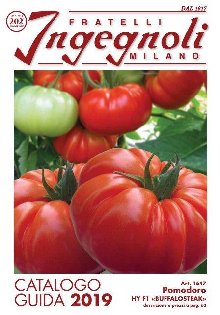Tomate MOBILE * Semi 10 * basso rendimento ricca varietà dall/'Ungheria Pomodori Semi