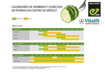 Calendario de Siembras y Cosechas de Pepinos en Centro de México