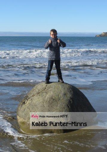 Kaleb's Pride Homework