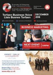 TBV Newsletter December 2018 (Eng)