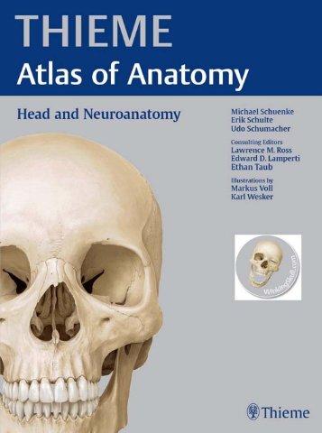 THIEME Atlas of Anatomy - Head and Neuroanatomy