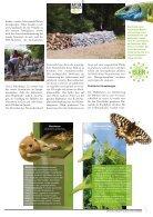 Naturschutz-Brief Nr 237 - Seite 5