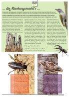 Naturschutz-Brief Nr 237 - Seite 7