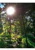 Gastgeber Bayerischer Wald 2019 - Page 7