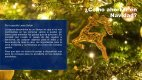 Leopoldo Lares Sultán - Ahorro Navidad - Page 3