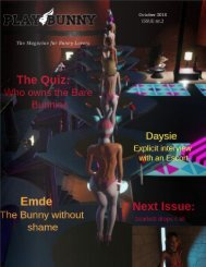 PlayBunny issue 2